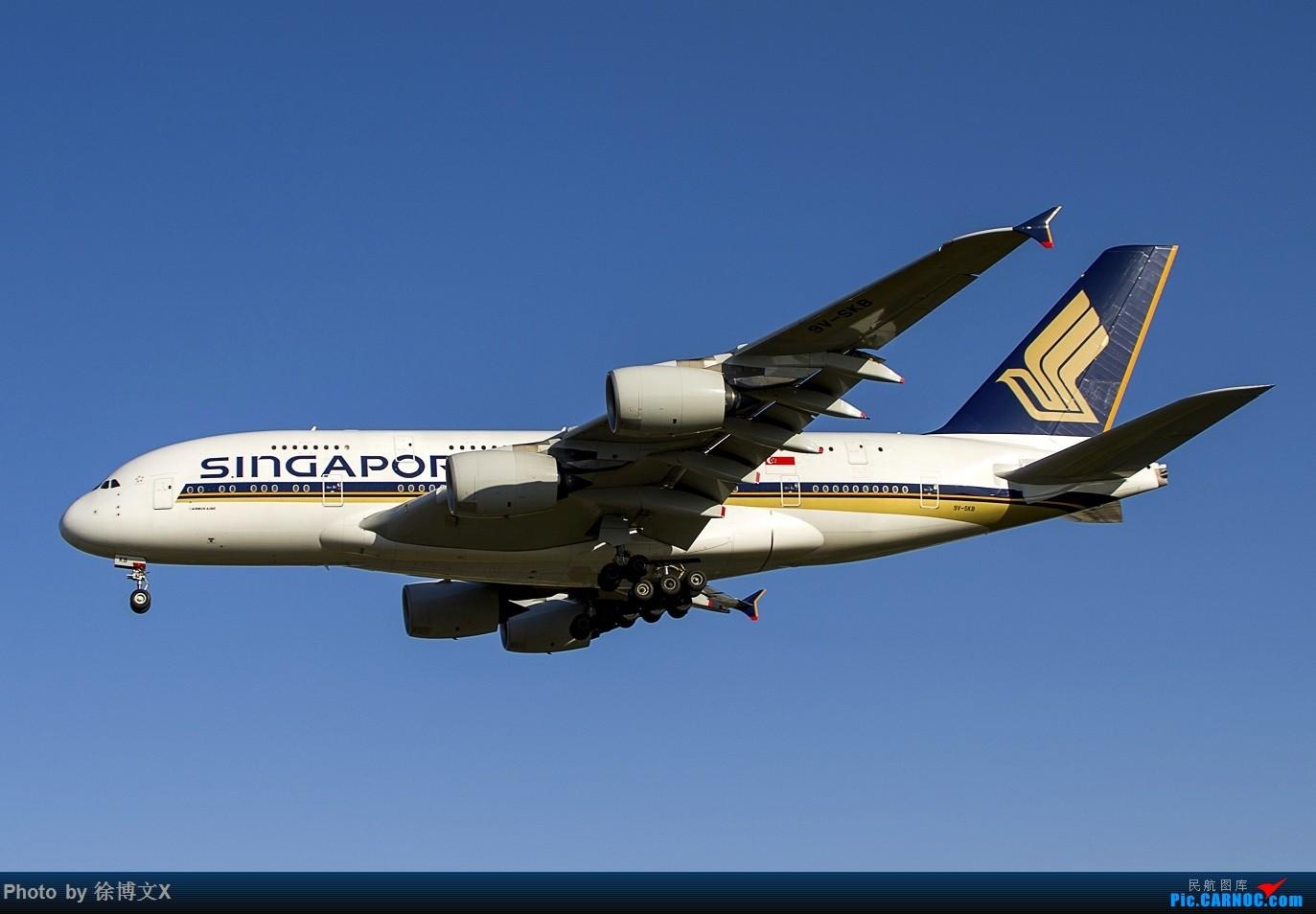 Re:[原创]四图  SQ380 (蓝天) AIRBUUS A380-800 9V-SKB 中国北京首都国际机场