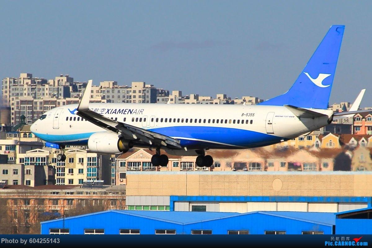 Re:[原创]相识总有一别,去送人顺便摁了几张...... BOEING 737-800 B-5355 中国大连周水子国际机场