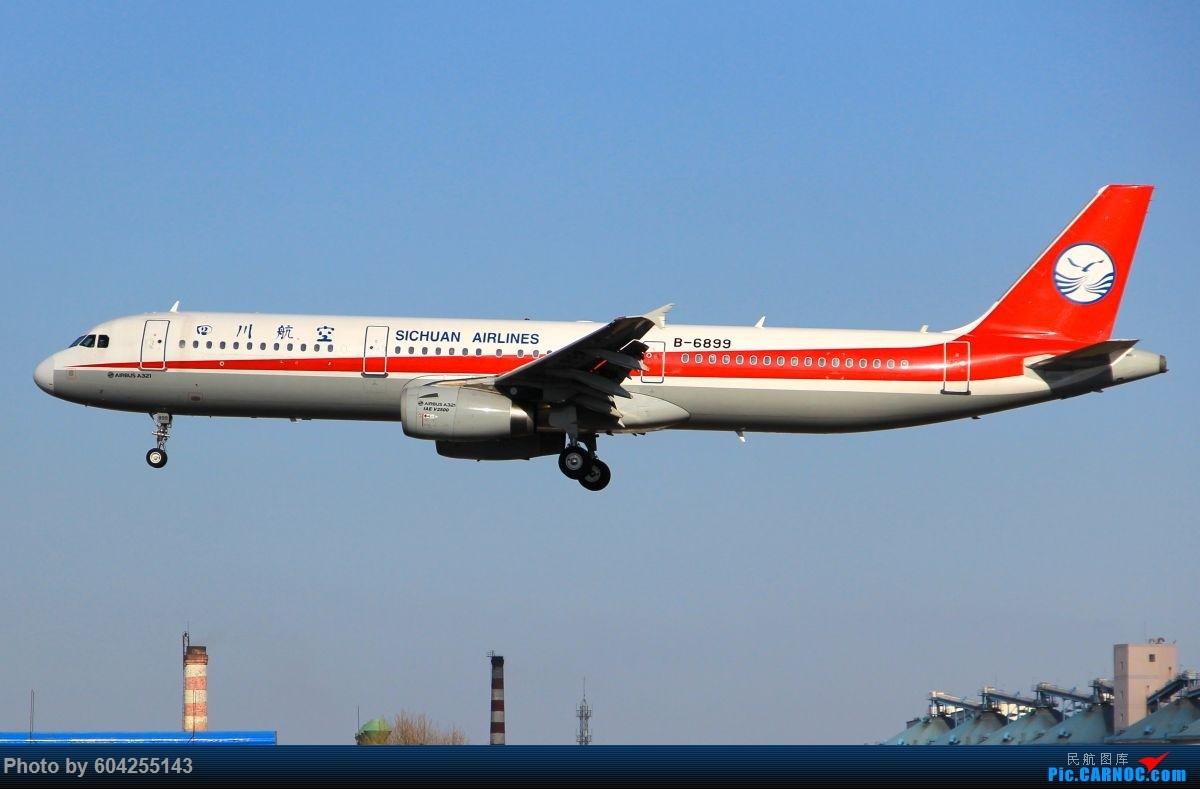 Re:[原创]相识总有一别,去送人顺便摁了几张...... AIRBUS A321-200 B-6899 中国大连周水子国际机场