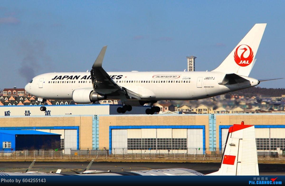 Re:[原创]相识总有一别,去送人顺便摁了几张...... BOEING 767-300  中国大连周水子国际机场