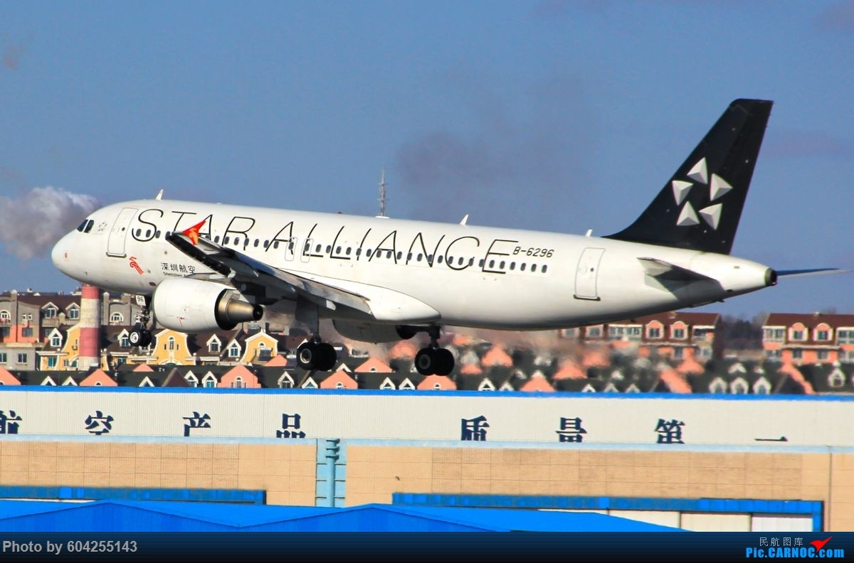 Re:[原创]相识总有一别,去送人顺便摁了几张...... AIRBUS A320-200 B-6296 中国大连周水子国际机场