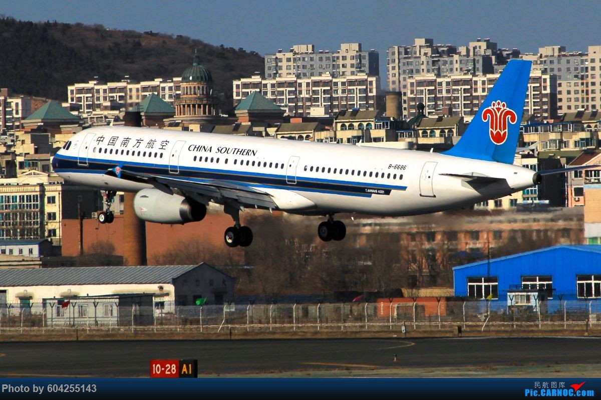 Re:[原创]相识总有一别,去送人顺便摁了几张...... AIRBUS A321-200 B-6686 中国大连周水子国际机场