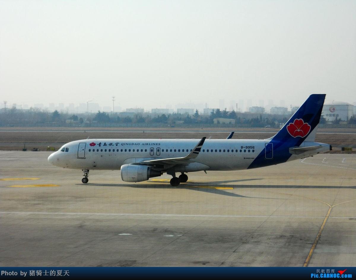 Re:[原创]人生首飞 AIRBUS A320-200 B-9956