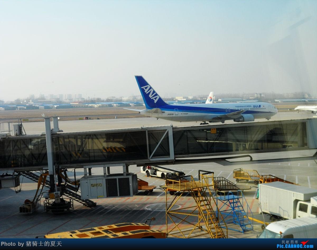 Re:[原创]人生首飞 B-767 JA 603A 青岛流亭
