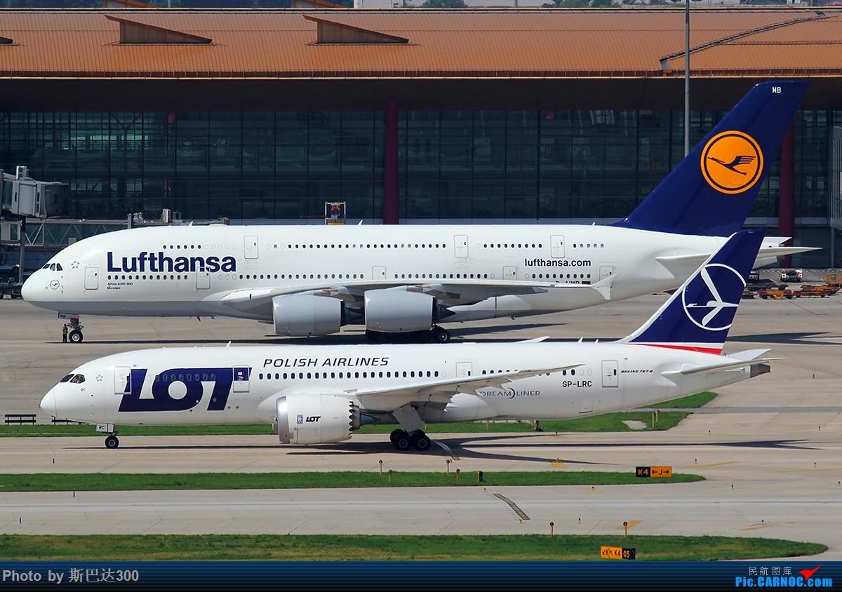 [原创]波兰787与汉莎380 BOEING 787 SP-LRC 中国北京首都国际机场