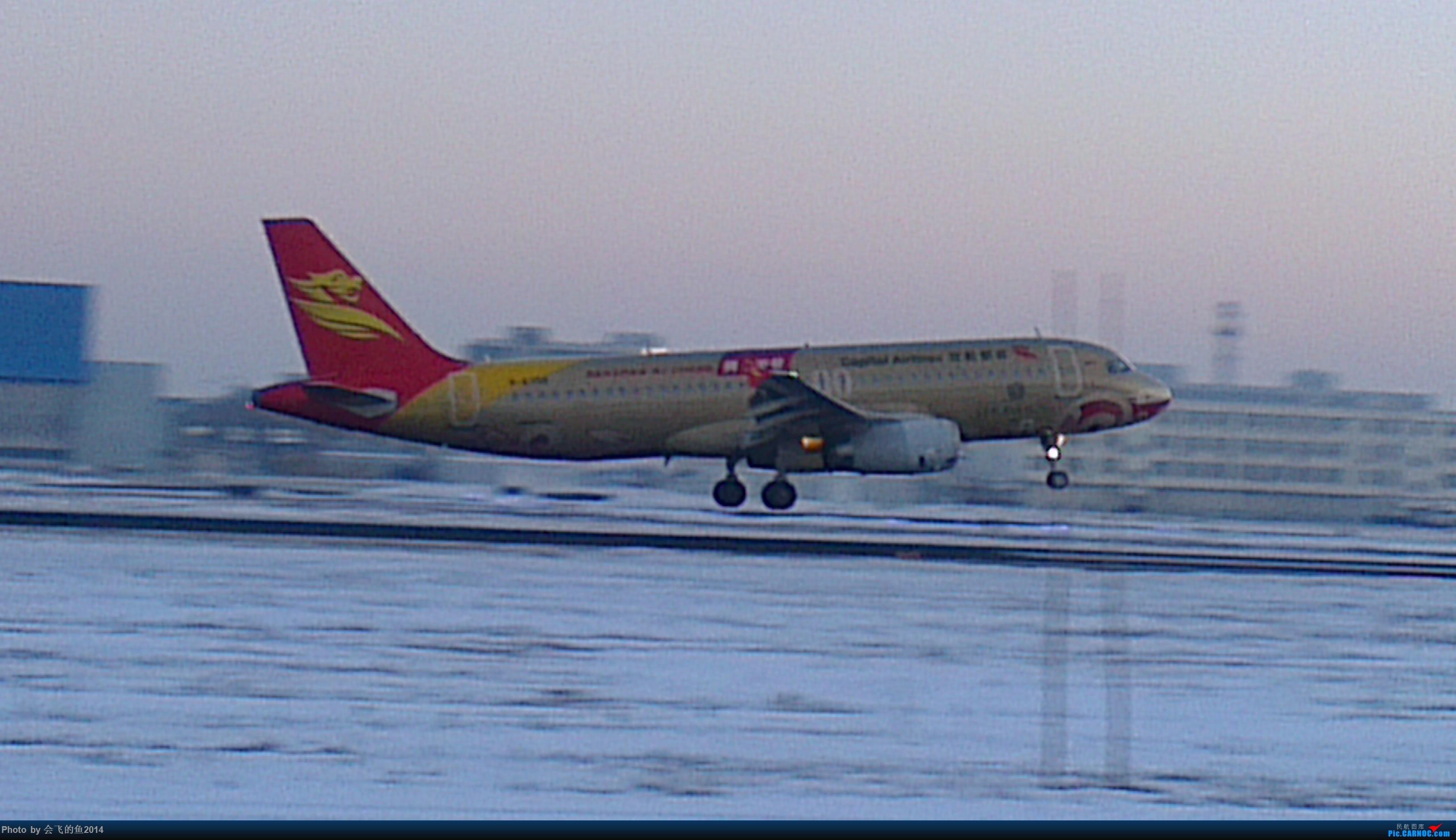 Re:[原创]桃仙机场的好货 320