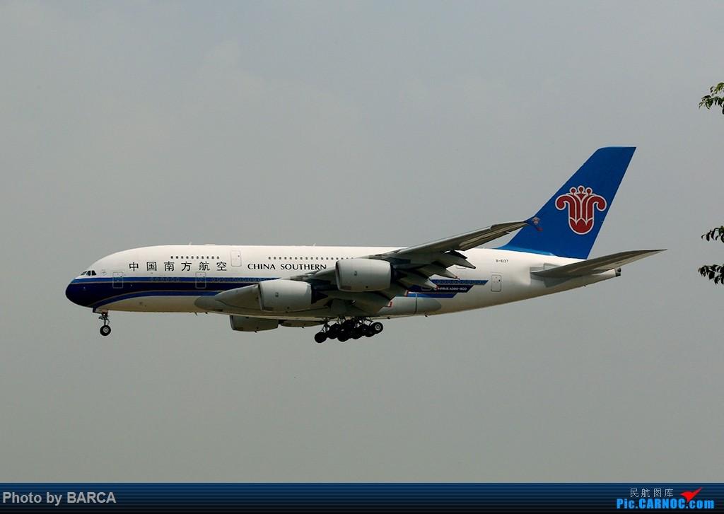 [原创][广州新白云机场]CZ, ZH, ET, TK, MD, W5 AIRBUS A380-800 B-6137 中国广州白云国际机场