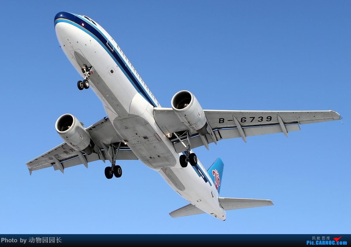 Re:[原创]【CASG】★★★这天~ 这雪~ 这地~!——冬天里无法抗拒的诱惑~!★★★ AIRBUS A320-200 B-6739 中国沈阳桃仙国际机场