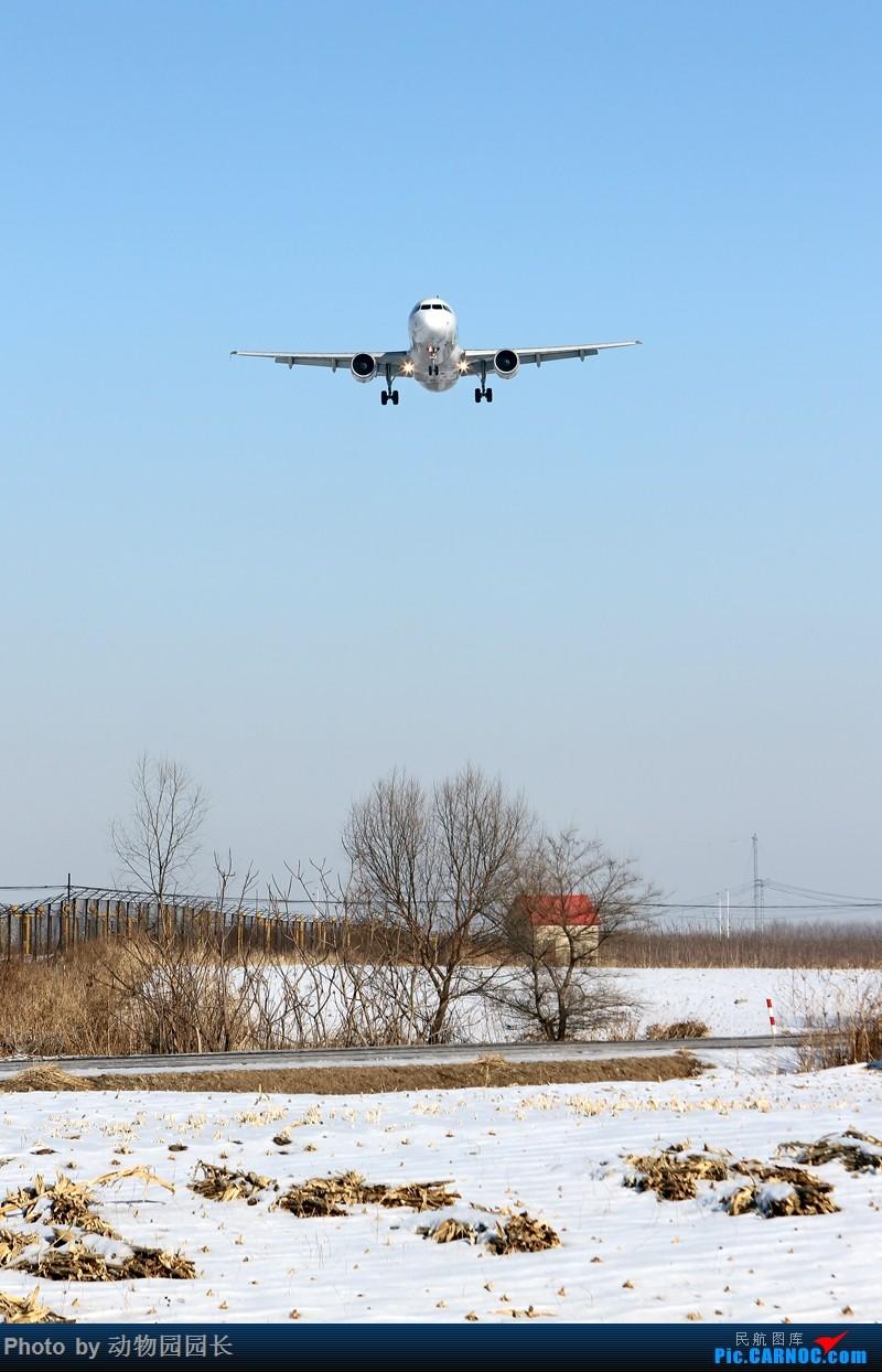 Re:[原创]【CASG】★★★这天~ 这雪~ 这地~!——冬天里无法抗拒的诱惑~!★★★ AIRBUS A320-200 B-6971 中国沈阳桃仙国际机场
