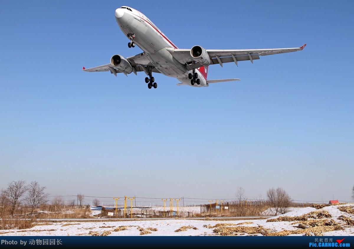 Re:[原创]【CASG】★★★这天~ 这雪~ 这地~!——冬天里无法抗拒的诱惑~!★★★ AIRBUS A330-200 B-6518 中国沈阳桃仙国际机场