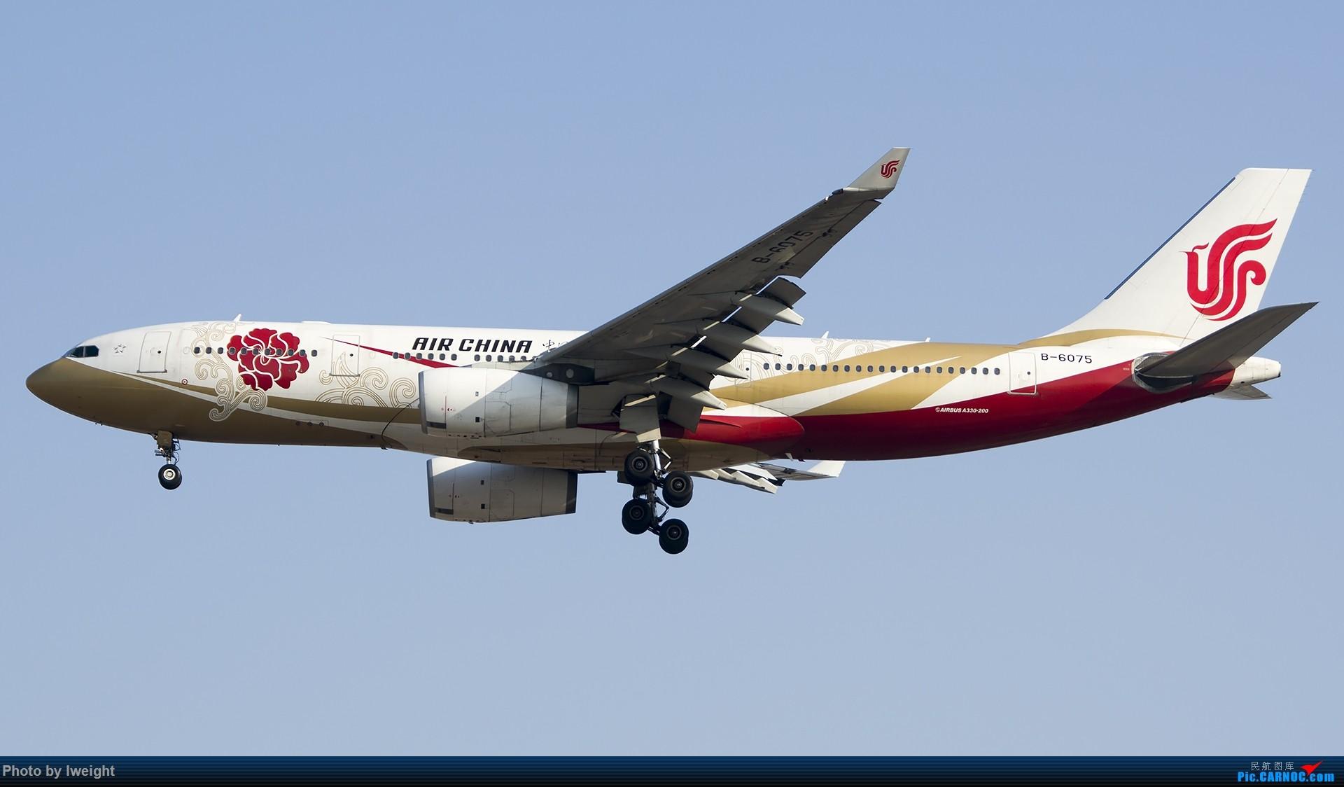 Re:[原创]2015-01-01守在01跑道…… AIRBUS A330-200 B-6075 中国北京首都国际机场