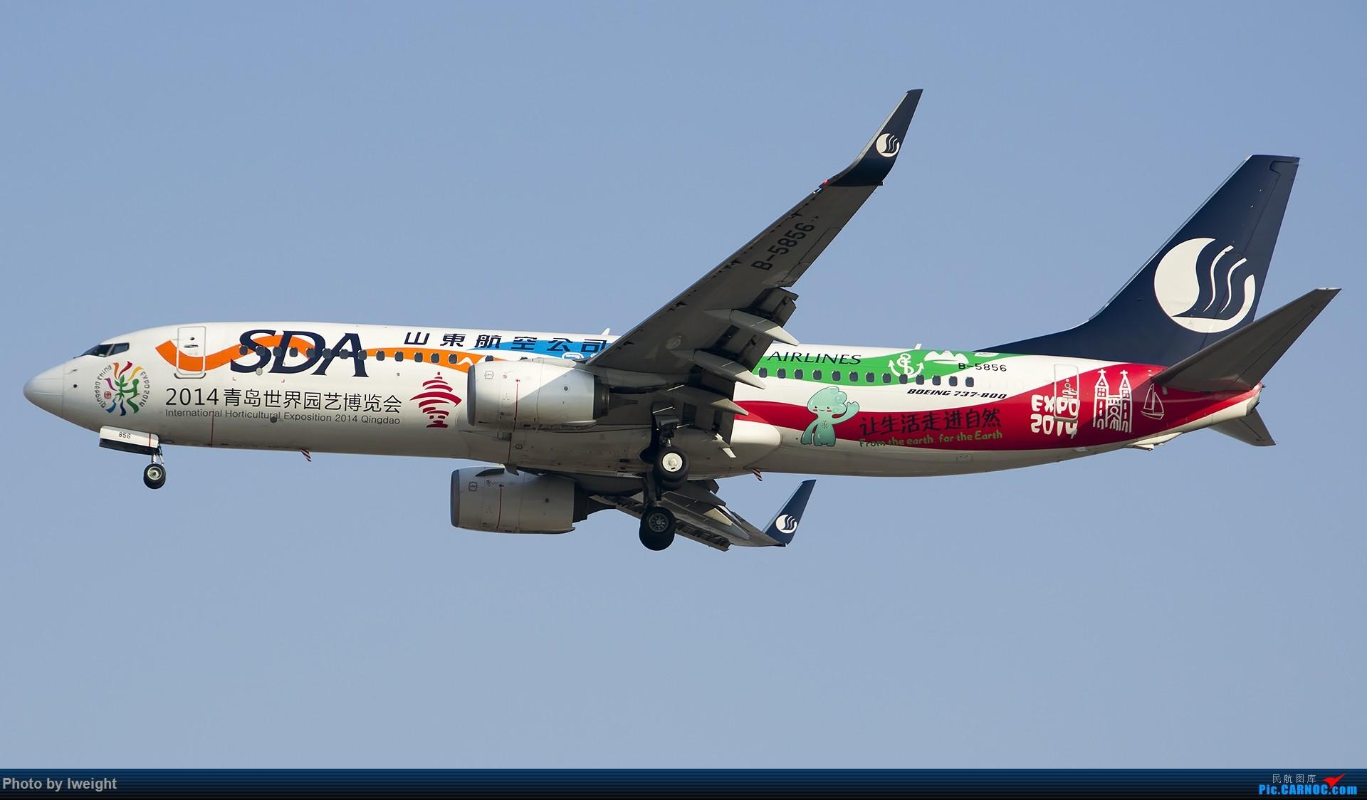 Re:[原创]2015-01-01守在01跑道…… BOEING 737-800 B-5856 中国北京首都国际机场