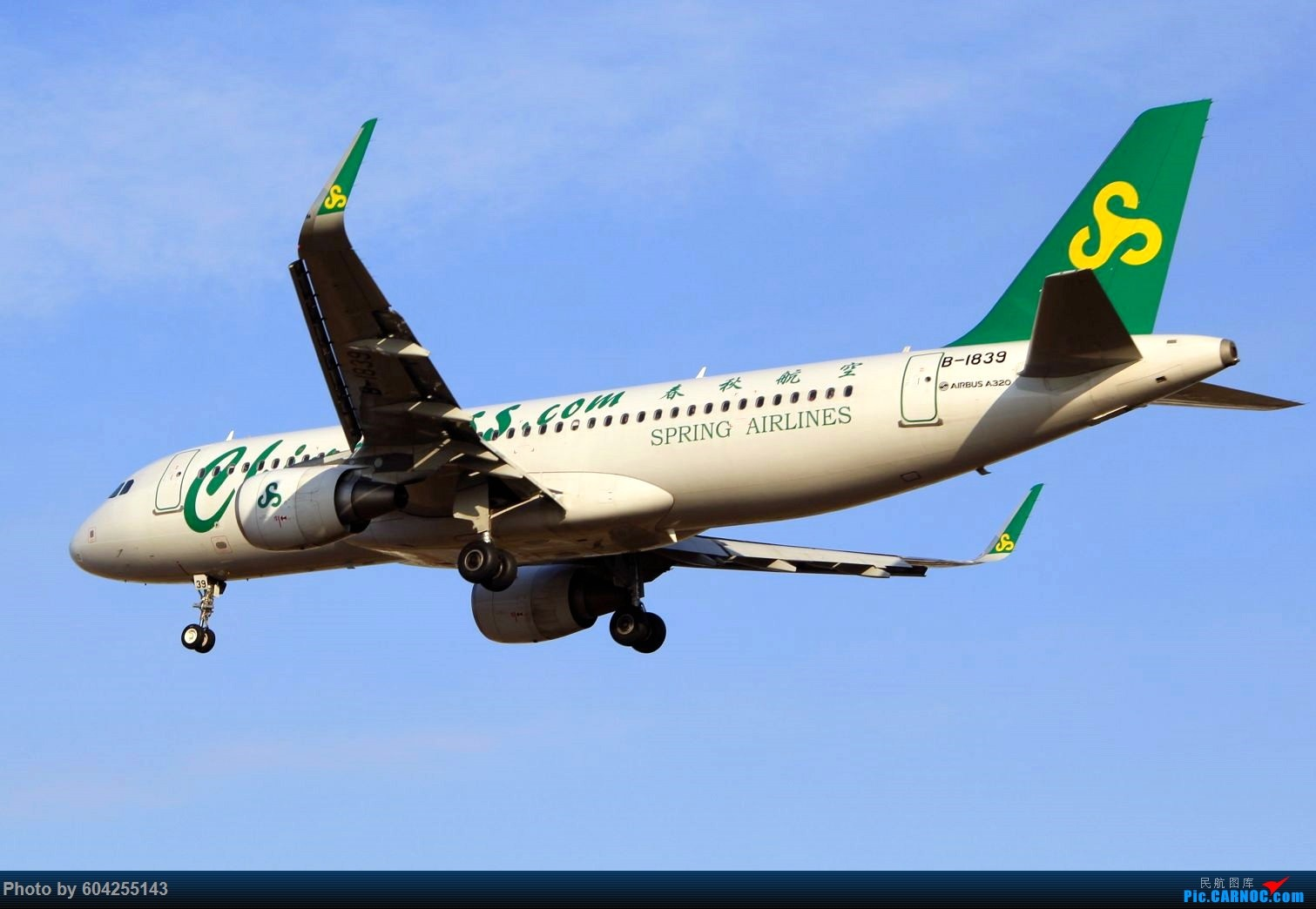 Re:[原创]渣图几张,没想到美图修完压缩的这么严重 AIRBUS A320-200 B-1839 中国大连周水子国际机场