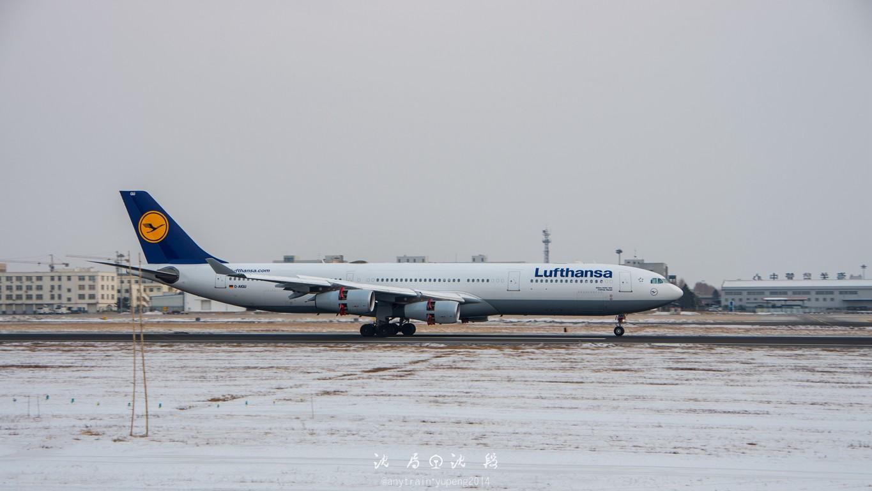 Re:[原创]桃仙机场的机机们 AIRBUS A340-300 D-AIGU 中国沈阳桃仙国际机场