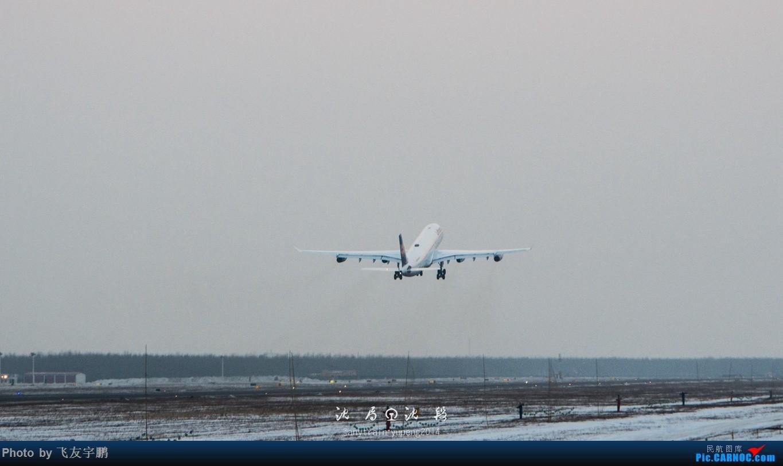 Re:[原创]桃仙机场的机机们 AIRBUS A340-300 D-AIGU
