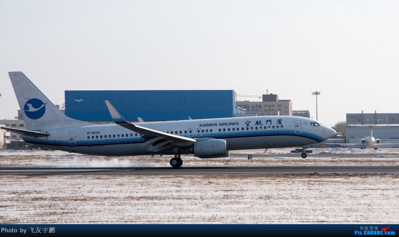 Re:桃仙机场的机机们 BOEING 737-800 B-5630 中国沈阳桃仙国际机场