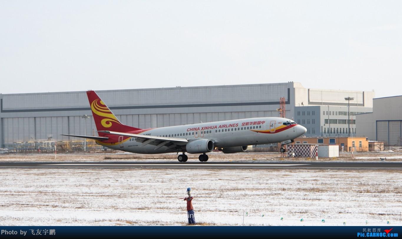 Re:[原创]桃仙机场的机机们 BOEING 737-800 B-5082 SHE