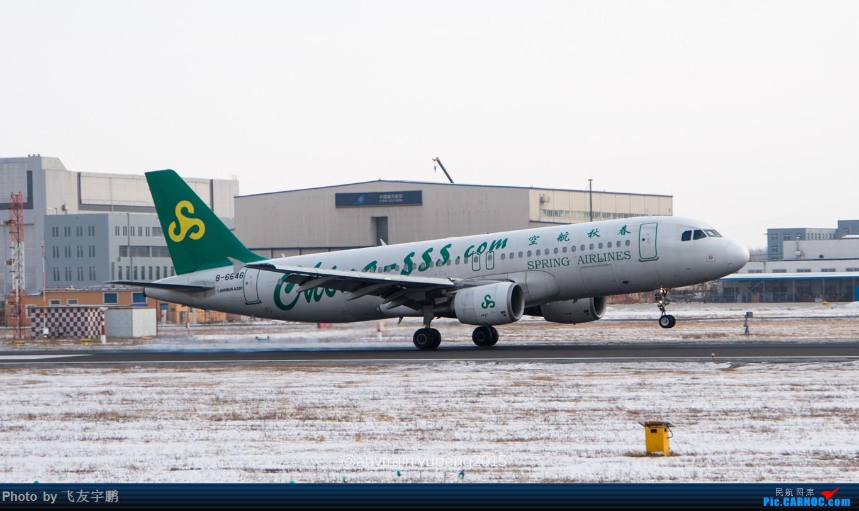 Re:[原创]桃仙机场的机机们 AIRBUS A320-200 B-6646 中国沈阳桃仙国际机场