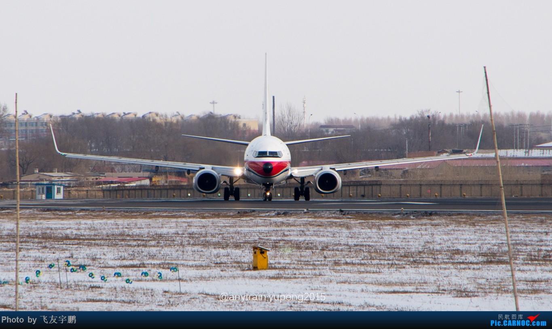 Re:[原创]桃仙机场的机机们 BOEING 737-800  中国沈阳桃仙国际机场