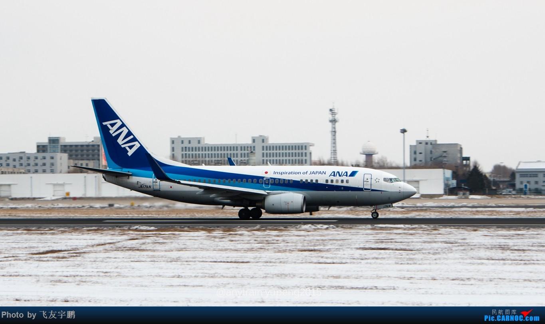 Re:[原创]桃仙机场的机机们 BOEING 737-700 JA17AN 中国沈阳桃仙国际机场