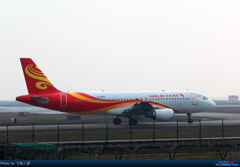 Re:[原创]2015年在CKG第一拍(芬航333罂粟彩绘,国航773大爱中国,海航332) AIRBUS A320-200 B-1825 重庆江北国际机场