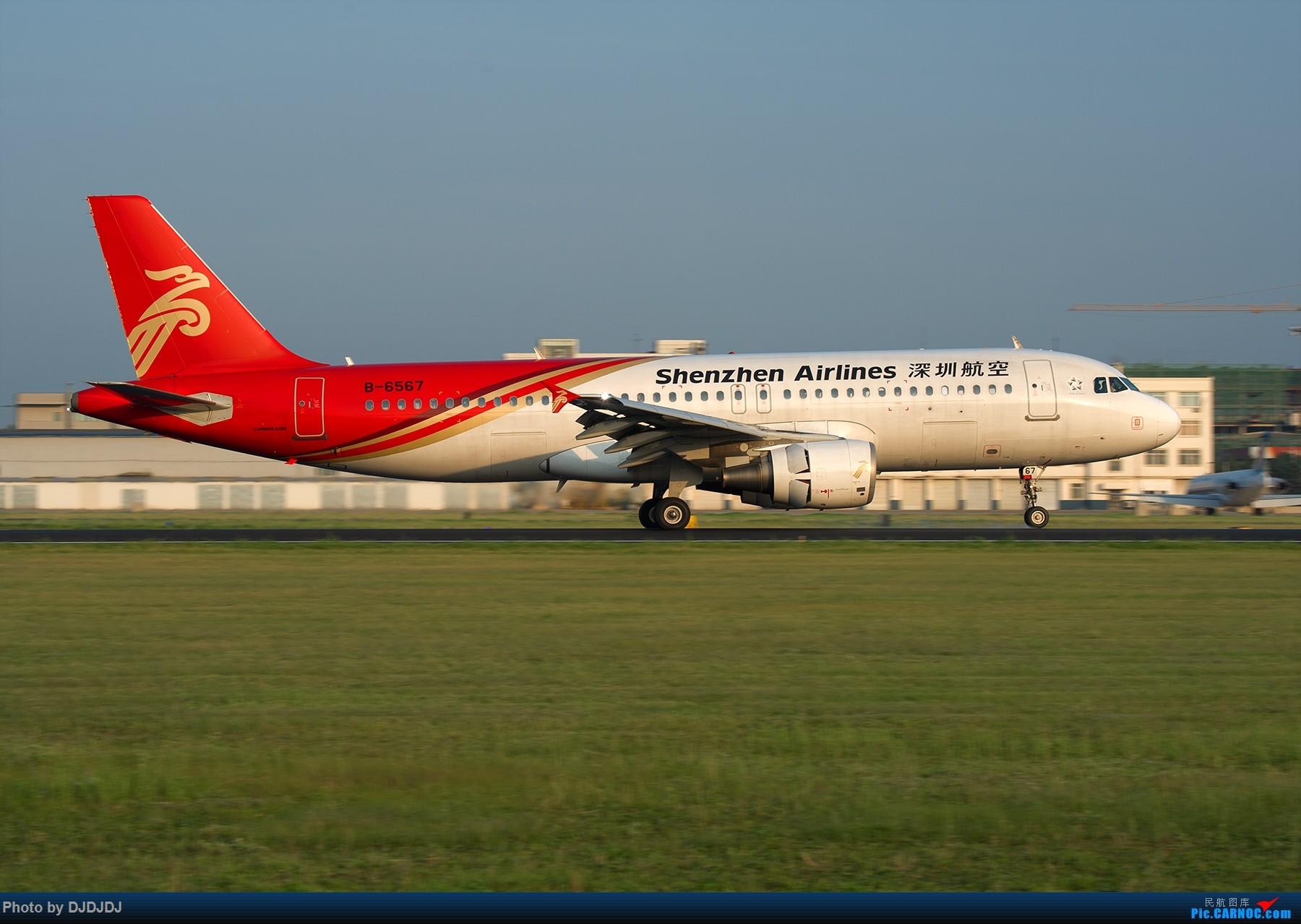 [原创]【BLDDQ--深圳打机队】沈阳好温暖--想念北方的花 AIRBUS A320-200 B-6567 中国沈阳桃仙国际机场