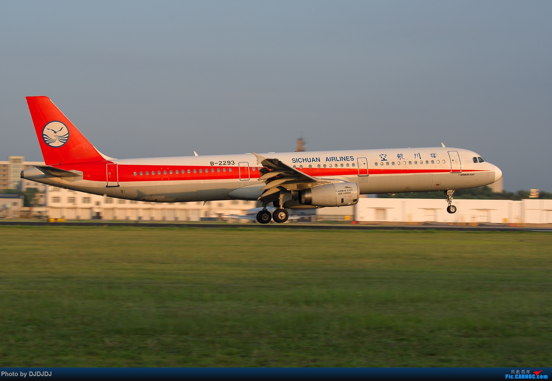 Re:[原创]【BLDDQ--深圳打机队】沈阳好温暖--想念北方的花 AIRBUS A321-100 B-2293 中国沈阳桃仙国际机场
