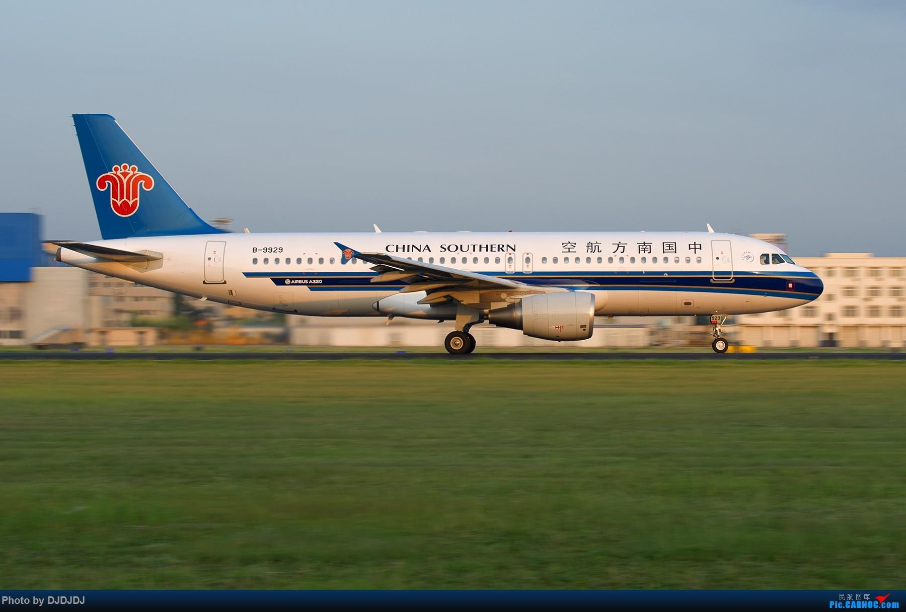 Re:[原创]【BLDDQ--深圳打机队】沈阳好温暖--想念北方的花 AIRBUS A320-200 B-9929 中国沈阳桃仙国际机场