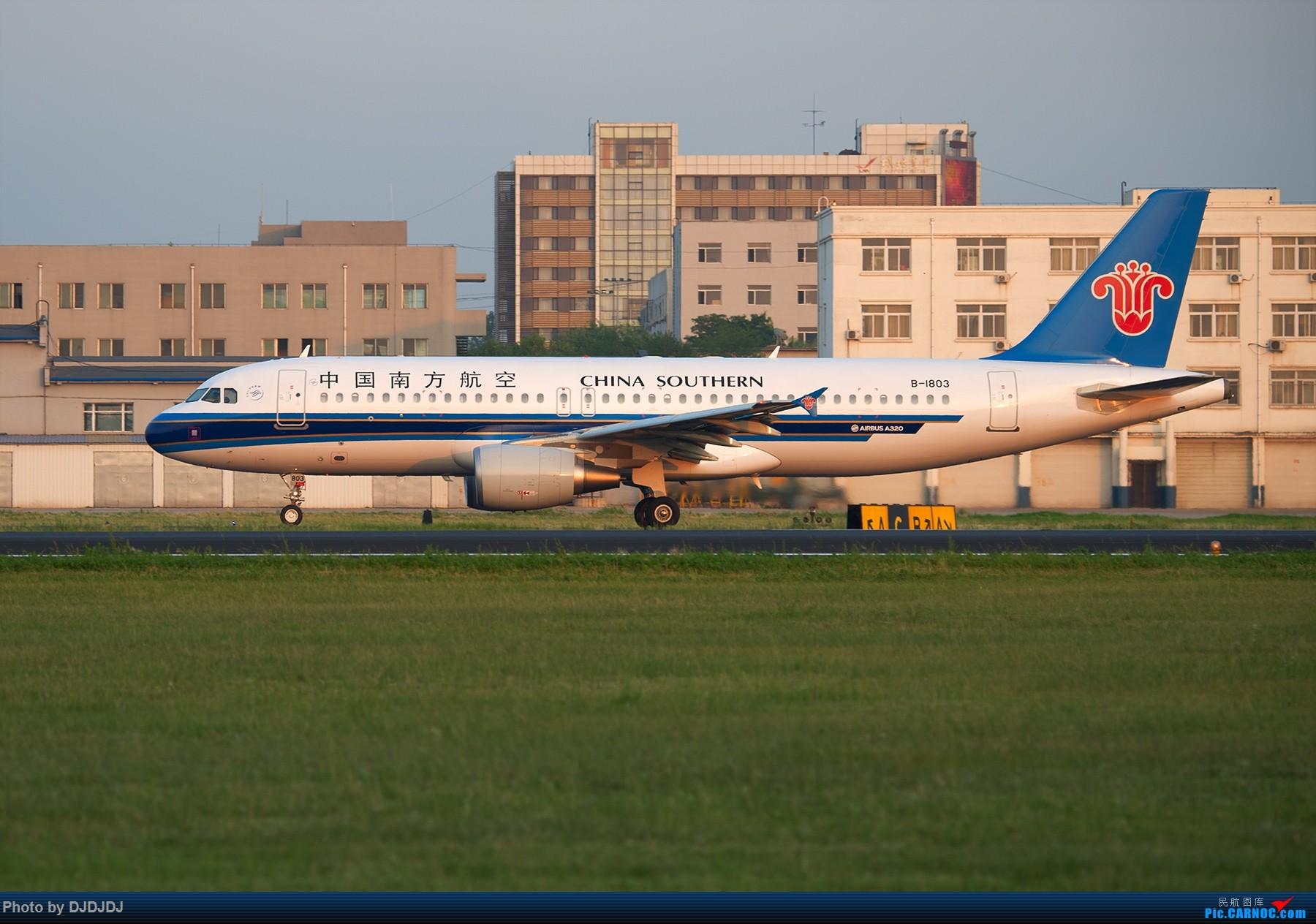 Re:[原创]【BLDDQ--深圳打机队】沈阳好温暖--想念北方的花 AIRBUS A320-200 B-1803 中国沈阳桃仙国际机场