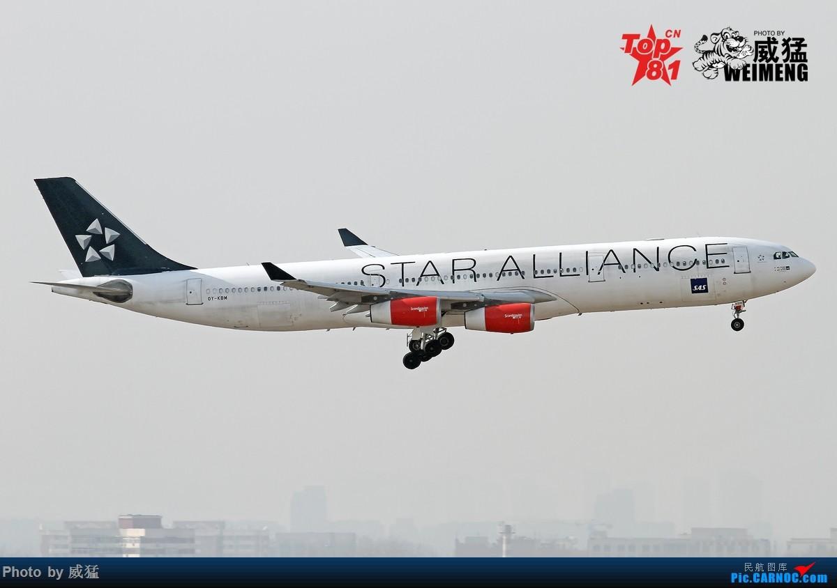 [原创]我是一图党~SAS大星星 AIRBUS A340-300 OY-KBM 中国北京首都国际机场