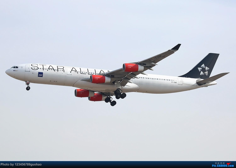 一图党-SAS大星星 AIRBUS A340-300 OY-KBM 北京首都机场