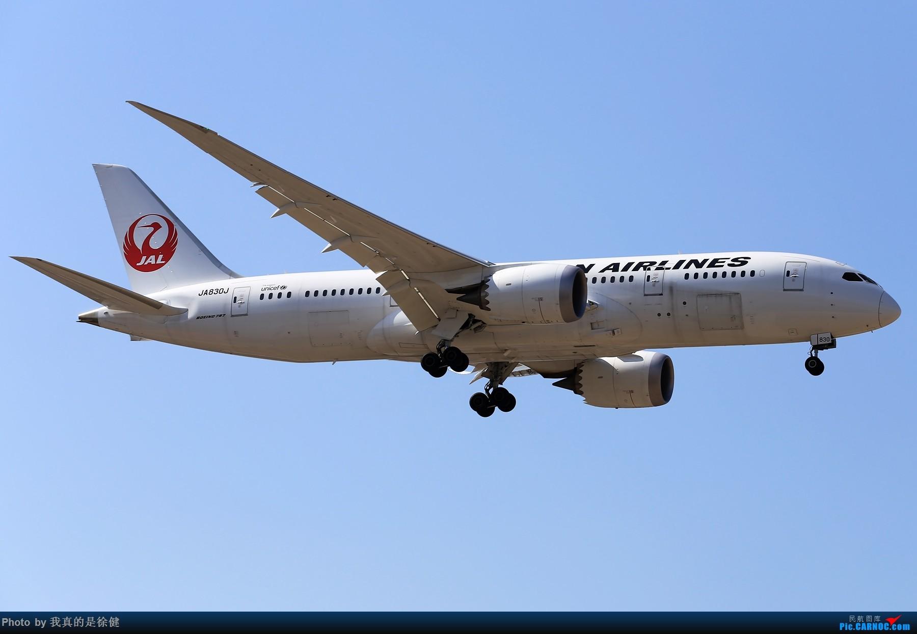 Re:[原创]【多图党】1800x1200 来一组Boeing787 PEK/ZBAA的日常 BOEING 787-8 JA830J 中国北京首都国际机场