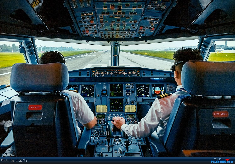 Re:[原创]秃子家的彩虹灰机,喜欢你就顶! AIRBUS A319-100 B-6443 中国成都双流国际机场