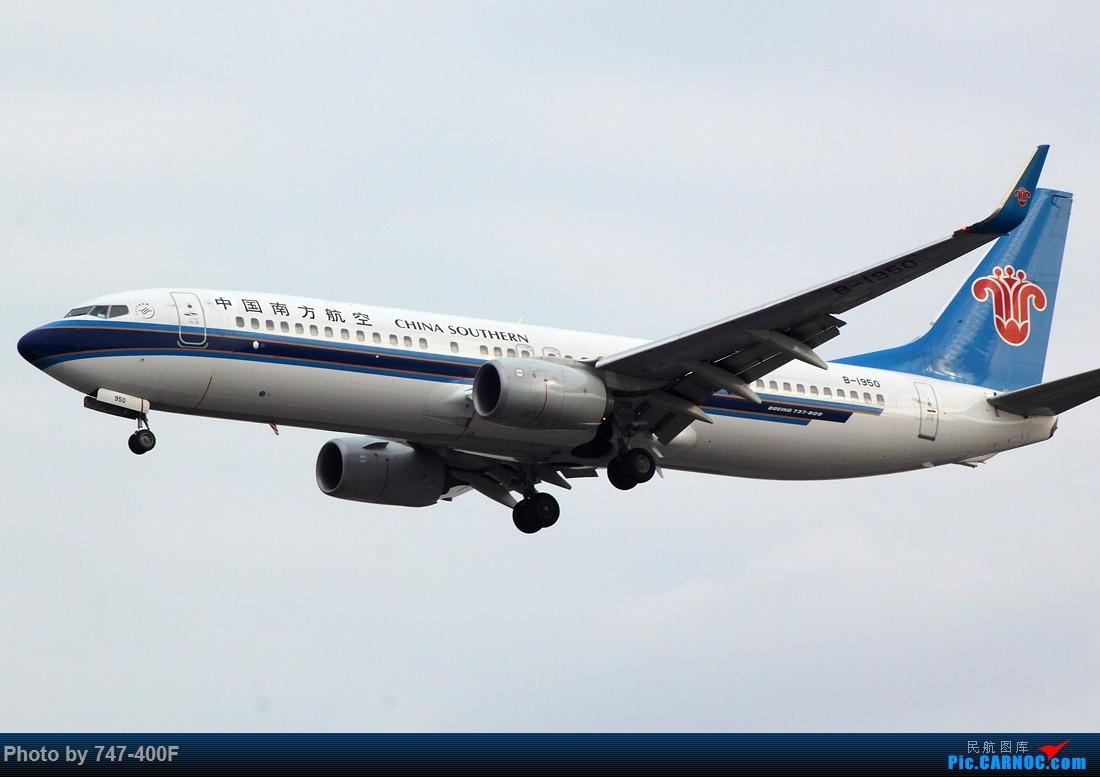 Re:[原创]1月最后一天ZSSS 36R打机 BOEING 737-800 B-1950 中国上海虹桥国际机场