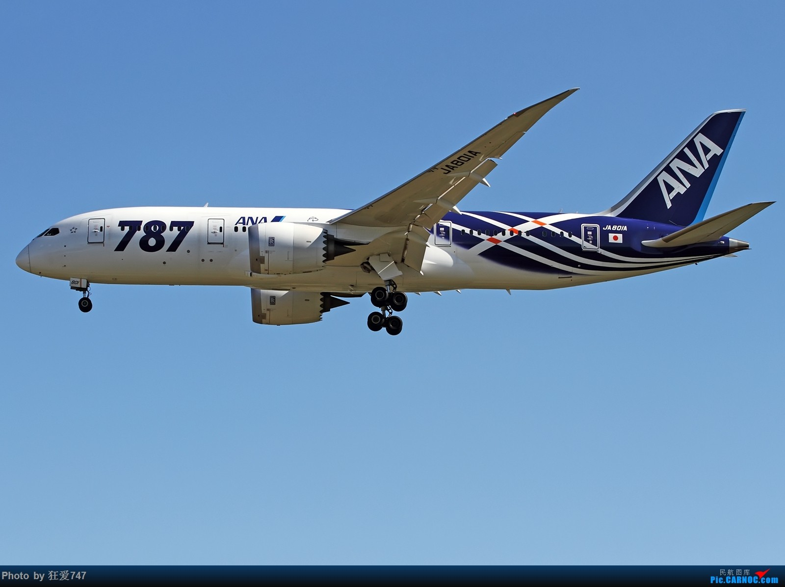 Re:[原创]这些年首都机场的787们 BOEING 787-8 JA801A 中国北京首都国际机场