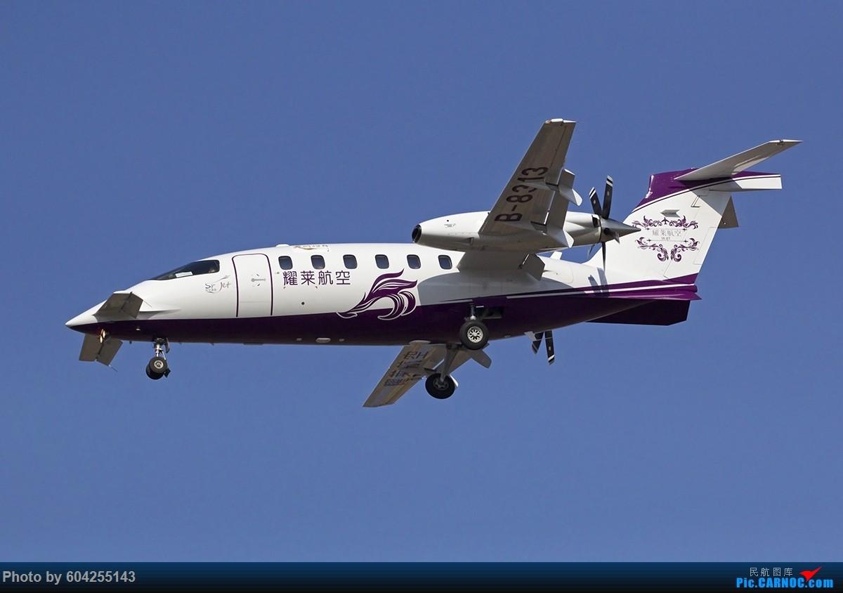 Re:[原创]比亚乔P180空中法拉利 PIAGGIO P180 B-8313 中国大连周水子国际机场