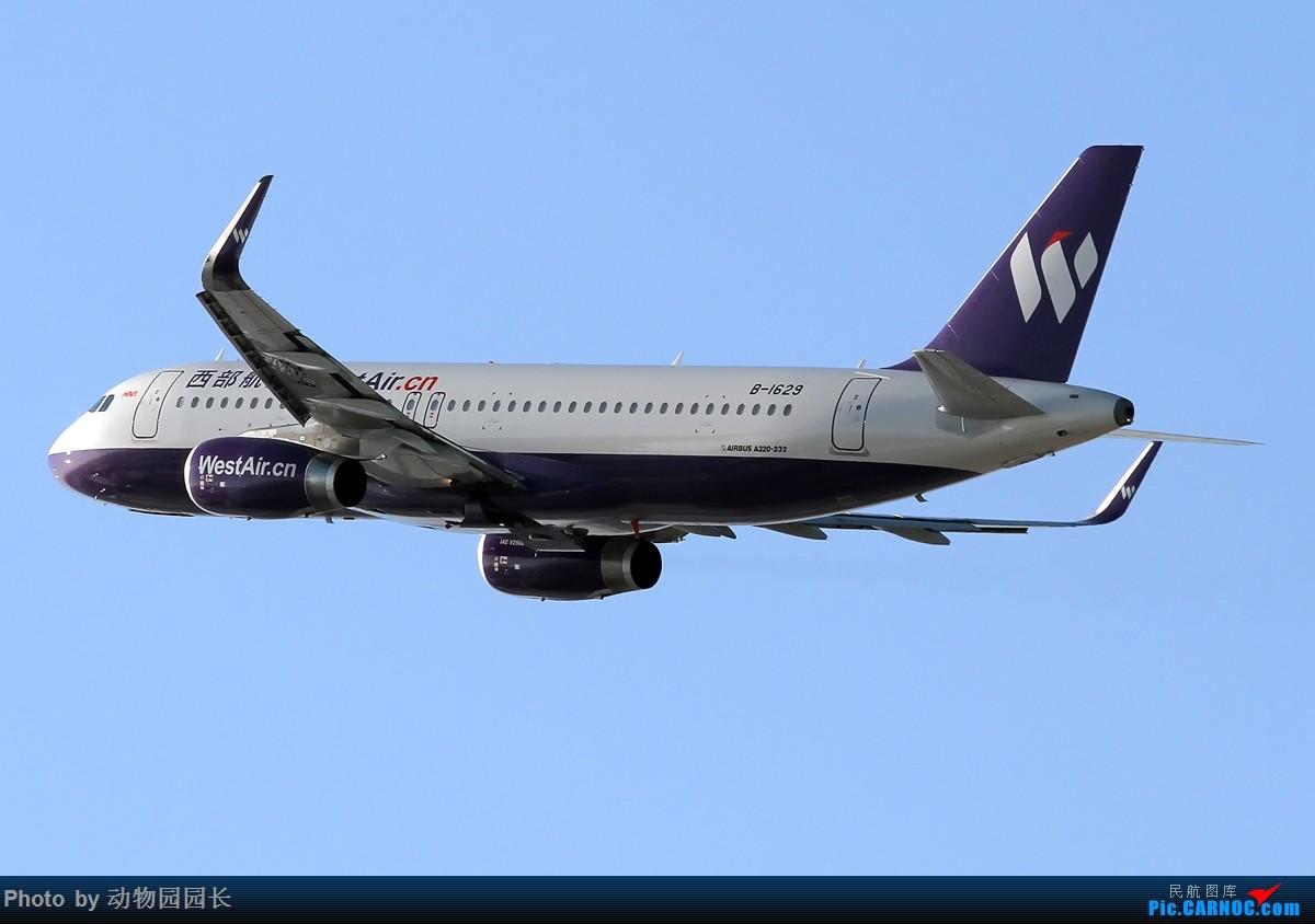 Re:[原创]【CASG】★★★西部航空的妖魅新涂装!★★★ AIRBUS A320-200 B-1629 中国沈阳桃仙国际机场