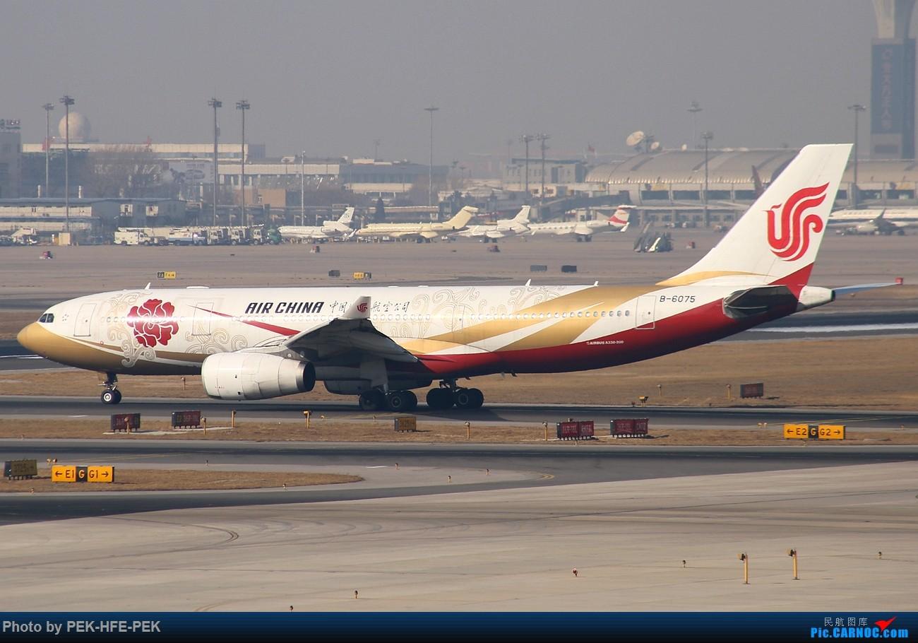 Re:[原创][AutumnKwok]长帖!PEK好货袭来!巴基斯坦310,可乐763,UA星空,国航爱中国,渤海海涛旅游,华航天合744,加航788,新航388... AIRBUS A330-200 B-6075