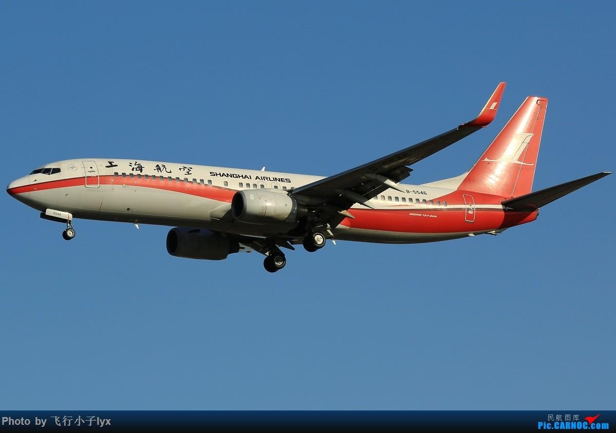 Re:[原创]数月没去机场,为了枫叶国787呆了一下午【43P】 BOEING 737-800 B-5546 中国北京首都国际机场