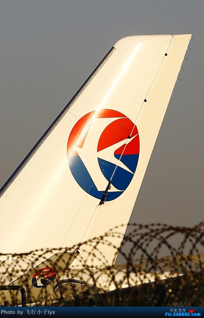 Re:[原创]数月没去机场,为了枫叶国787呆了一下午【43P】 AIRBUS A330-300 B-6095 中国北京首都国际机场