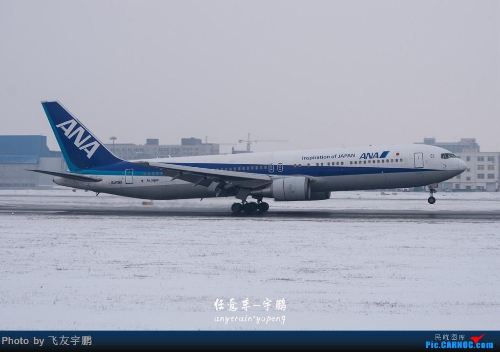 Re:农历腊月二十九 风雪中的SHE BOEING 767-300 JA613A 中国沈阳桃仙国际机场