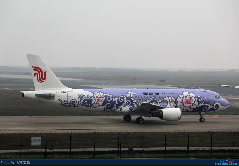 Re:[原创]CKG2015春运大戏开幕了(各种重型机纷纷登场,大家使劲砸飞机哈) AIRBUS A320-200 B-2376 重庆江北国际机场