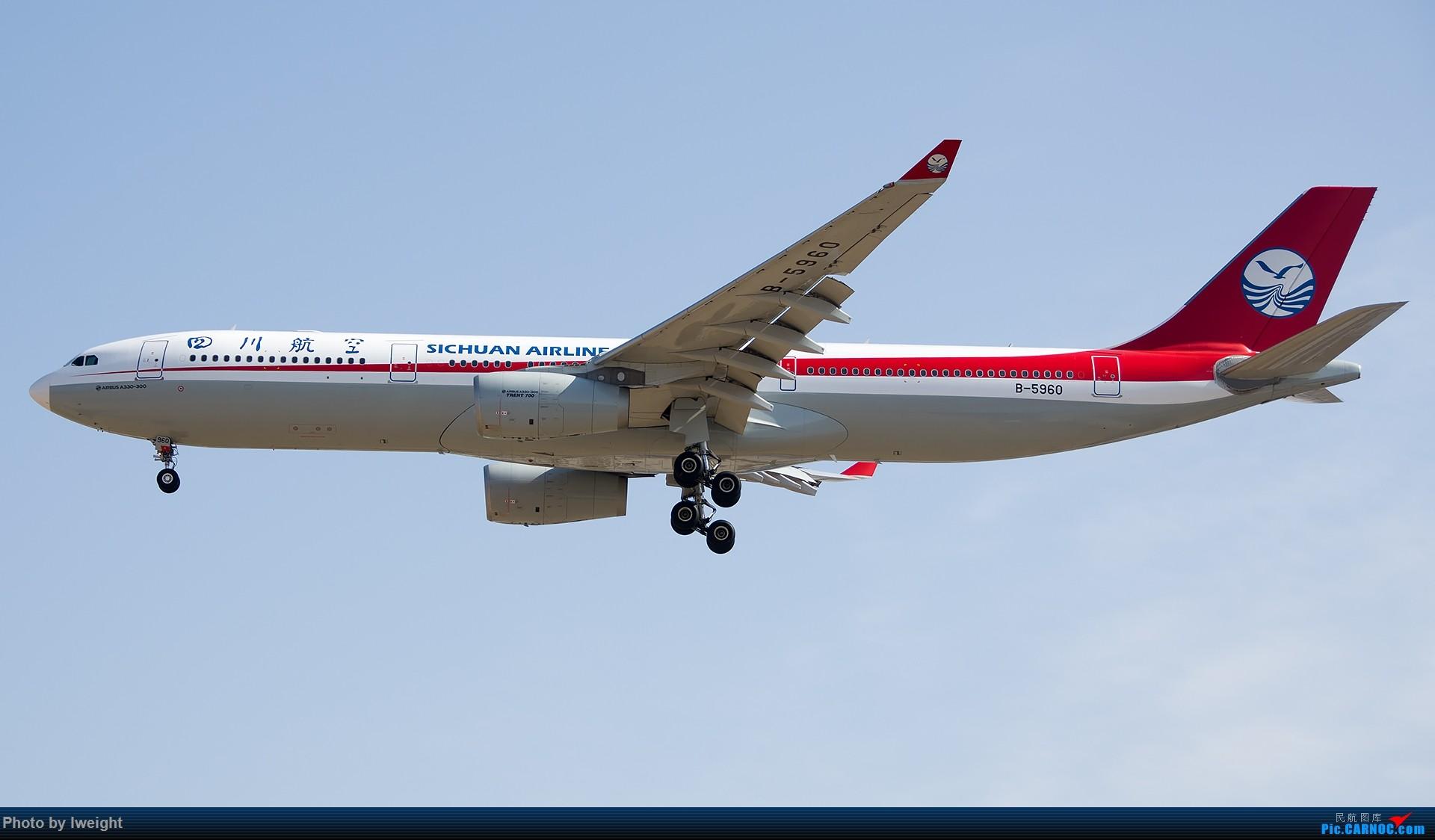 Re:[原创]羊年第一次拍机,首都机场[2015-2-23] AIRBUS A330-300 B-5960 中国北京首都国际机场