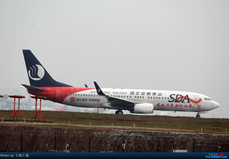 Re:[原创]2015CKG春运拍机(春运拍机乐翻天,过瘾) BOEING 737-800 B-1931 重庆江北国际机场