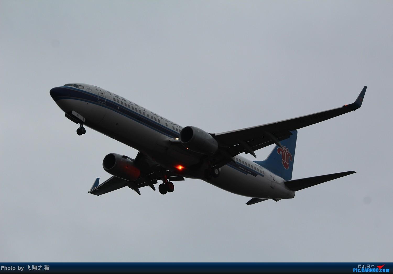 Re:[原创]2015CKG春运拍机(春运拍机乐翻天,过瘾) BOEING 737-800  重庆江北国际机场