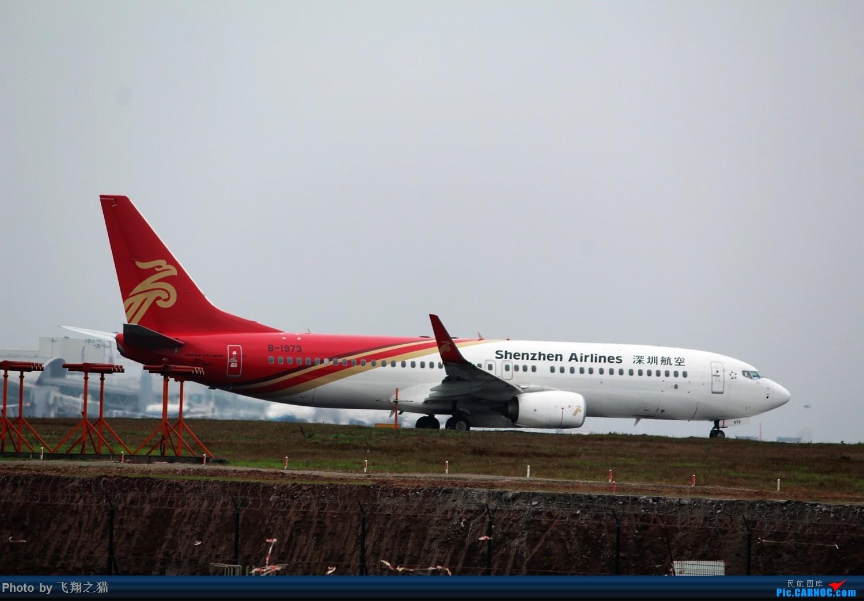 Re:[原创]2015CKG春运拍机(春运拍机乐翻天,过瘾) BOEING 737-800 B-1973 重庆江北国际机场