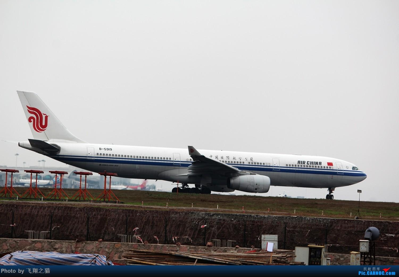 Re:[原创]2015CKG春运拍机(春运拍机乐翻天,过瘾) AIRBUS A330-300 B-5919 重庆江北国际机场