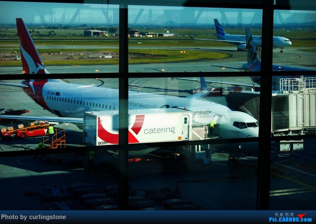Re:[原创]【长春飞友会】最初的和最后的任性——人生难道不是 不缺憾 便也不美丽的么 BOEING 737-800 ZK-ZQH 澳大利亚墨尔本机场