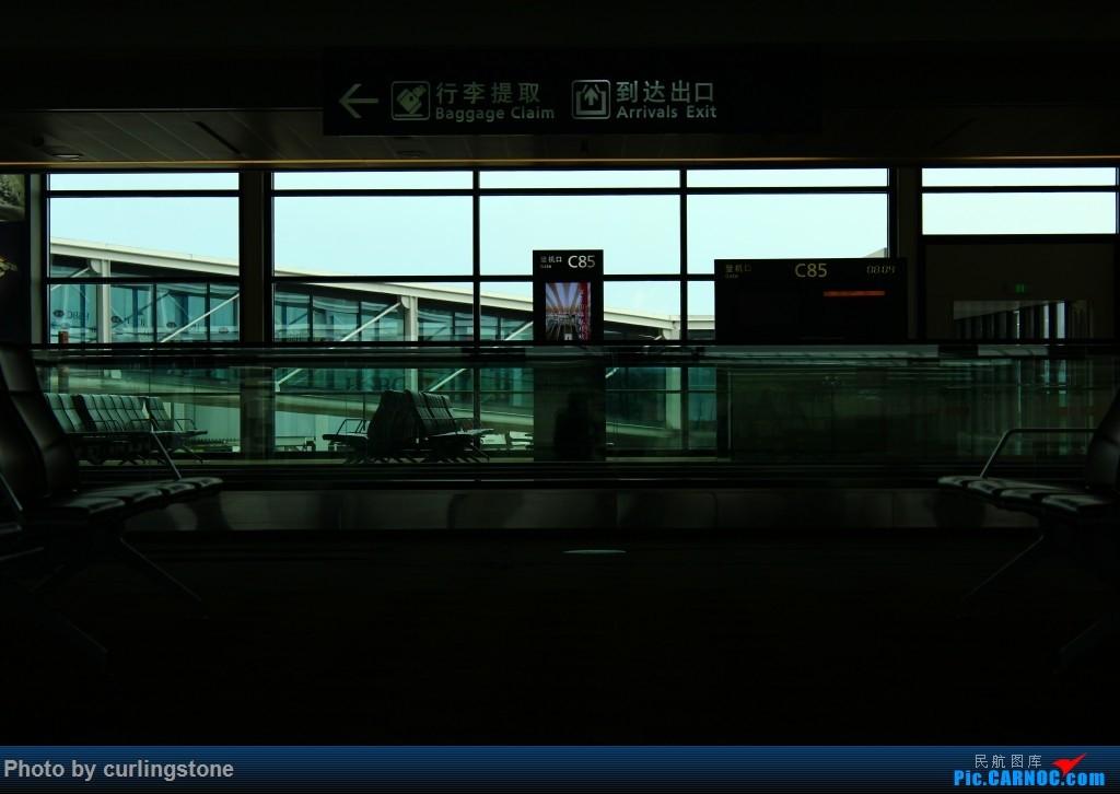 Re:[原创]【长春飞友会】最初的和最后的任性——人生难道不是 不缺憾 便也不美丽的么    中国上海浦东国际机场