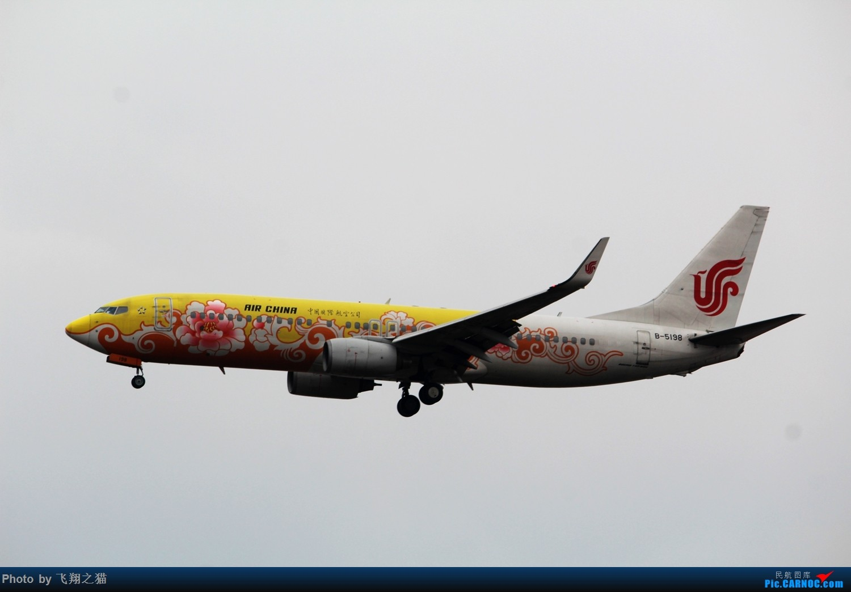 Re:[原创]2015CKG春运最后的疯狂 BOEING 737-800 B-5198 重庆江北国际机场
